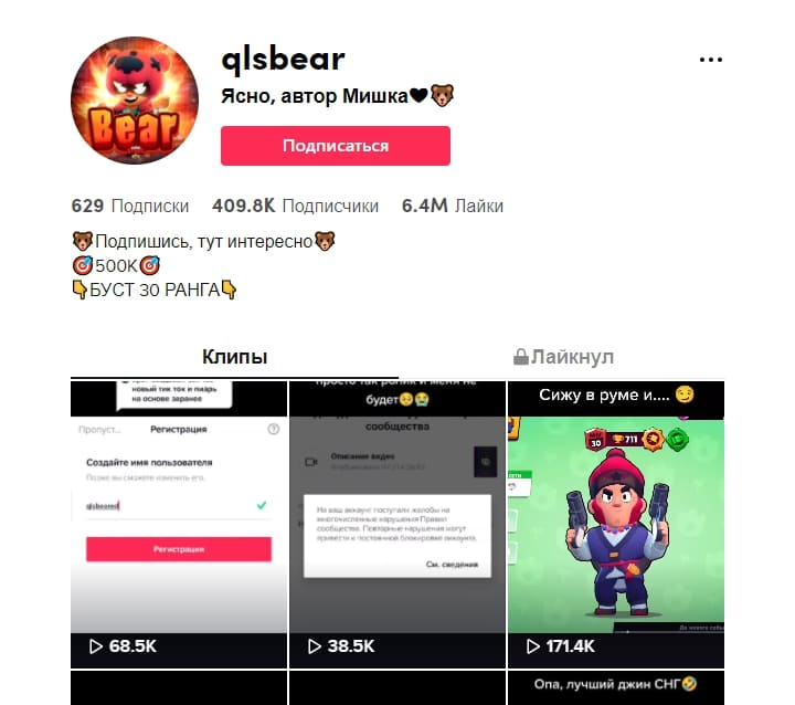 qlsbear ТикТок